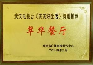 武汉电视奖牌